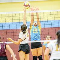 Rehoboth Lynx Tiana Becenti (4) tips to Dulce Hawk Jasmine Salazar (21) at Rehoboth High School Saturday.