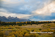67545-09610 Fall color and Grand Teton Mountain Range from Blacktail Falls Overlook, Grand Teton National Park, WY