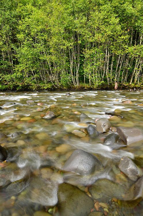 Rocky rapid on Oregon's Breitenbush River.