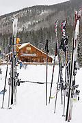 Vertical of skis in snow