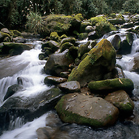 PERU, Yonan River in cloud forests of upper Amazon.