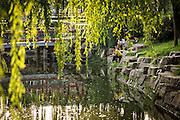 Chinese men fish in Zhongshan Park in Beijing, China