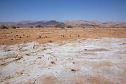 Yotveta Salt plains, Timna park, Arava, Israel