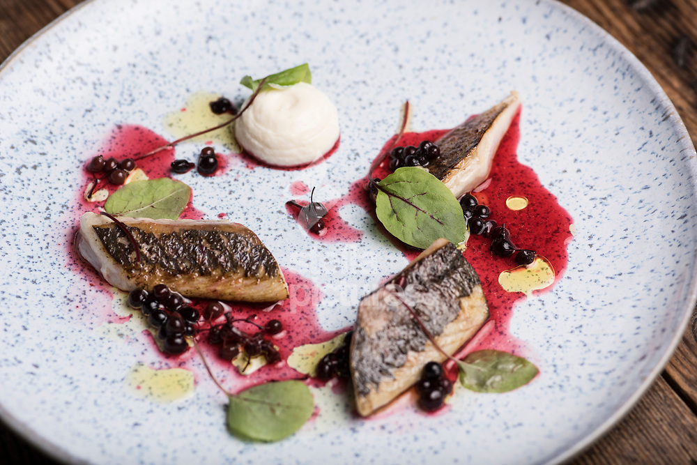 Mackerel/elderberries/horseradish at 'Salon' in Brixton<br /> Picture by Daniel Hambury/Stella Pictures Ltd 07813022858<br /> 11/09/2017