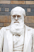 The Natural History Museum, London. The Darwin statue has been moved to the Central Hall to celebrate Darwin's bicentenery.