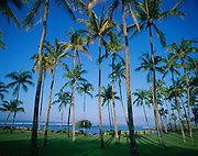 Kapalua, Maui, Hawaii, USA<br />