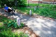 Fietsers rijden over een fietspad tussen Soest en Den Dolder door het bos.<br /> <br /> Cyclists ride a cycle path between Soest and Den Dolder in the woods.