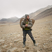 """Man collecting dry dung used a fuel. Camp at a Wakhi high pasture names """"Warm"""", below Garumdee Pass. Guiding and photographing Paul Salopek while trekking with 2 donkeys across the """"Roof of the World"""", through the Afghan Pamir and Hindukush mountains, into Pakistan and the Karakoram mountains of the Greater Western Himalaya."""