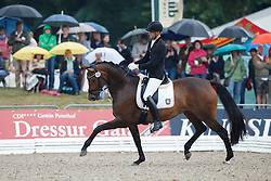 Hermes Marcus, (GER), Sweetheart FH<br /> First Qualifier 6 years old horses<br /> World Championship Young Dressage Horses - Verden 2015<br /> © Hippo Foto - Dirk Caremans<br /> 07/08/15