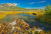 Stream and the Canadian Rocky Mountains, Jasper National Park, Alberta, Canada