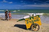 Brazil-Bahia, a beautiful coast