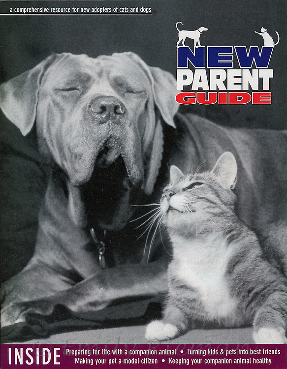Cover of New Parent Guide