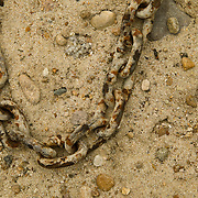 Idaho, Canyon County, Deer Flat National Wildlife Refuge, Nampa, a rusty chain lays on the sandy shore