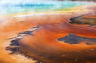 Detalle de bacteria termofílica en Grand Prismatic Spring, Yellowstone NP, Wyoming (Estados Unidos)