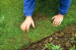 Repairing a damaged lawn edge<br /> Turning round and firming