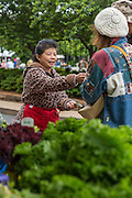 Kalee Yang of Rainbow Farm in Siloam Springs helps Catherin and Edward Mosher of Fayetteville purchase produce at the Farmer's Market in Fayetteville on Saturday, May 17, 2014, in Fayetteville, Ark. Photo by Beth Hall