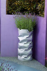 Lavender in a wiggly silver container. Reflections Garden. Designer: David Domoney - Chelsea 2005