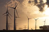 Wind turbines at dawn in Eemshaven, Netherlands