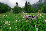 One more view of the enchanted rural environment of the Valchiusella in Piedmont, Italy. Taken on a overcast and somewhat rainy day of mid June, this is stitched from five vertical takes