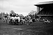 Scottish scrum half, S Coughtrie, gets the ball away from a scrum,..Irish Rugby Football Union, Ireland v Scotland, Five Nations, Landsdowne Road, Dublin, Ireland, Saturday 24th February, 1962,.24.2.1962, 2.24.1962,..Referee- N M Parkes, Rugby Football Union, ..Score- Ireland 6 - 20 Scotland, ..Irish Team, ..F G Gilpin, Wearing number 15 Irish jersey, Full Back, Queens University Rugby Football Club, Belfast, Northern Ireland,..W R Hunter, Wearing number 14 Irish jersey, Right Wing, C I Y M S Rugby Football Club, Belfast, Northern Ireland, ..M K Flynn, Wearing number 13 Irish jersey, Right Centre, Wanderers Rugby Football Club, Dublin, Ireland, ..D Hewitt, Wearing number 12 Irish jersey, Left centre, Instonians Rugby Football Club, Belfast, Northern Ireland,..N H Brophy, Wearing number 11 Irish jersey, Left wing, Blackrock College Rugby Football Club, Dublin, Ireland, ..G G Hardy, Wearing  Number 10 Irish jersey, Stand Off, Bective Rangers Rugby Football Club, Dublin, Ireland,  ..J T M Quirke, Wearing number 9 Irish jersey, Scrum Centre, Blackrock College Rugby Football Club, Dublin, Ireland, ..S Millar, Wearing number 1 Irish jersey, Forward, Ballymena Rugby Football Club, Antrim, Northern Ireland,..A R Dawson, Wearing number 2 Irish jersey, Forward, Wanderers Rugby Football Club, Dublin, Ireland, ..R J McLoughlin, Wearing number 3 Irish jersey, Forward, University College Dublin Rugby Football Club, Dublin, Ireland, ..W A Mulcahy, Wearing number 4 Irish jersey, Captain of the Irish team, Forward, Bohemians Rugby Football Club, Limerick, Ireland,..W J McBride, Wearing number 5 Irish jersey, Forward, Ballymena Rugby Football Club, Antrim, Northern Ireland,..D Scott, Wearing number 6 Irish jersey, Forward, Malone Rugby Football Club, Belfast, Northern Ireland, ..M L Hipwell, Wearing number 8 Irish jersey, Forward, Terenure Rugby Football Club, Dublin, Ireland, ..M G Culliton, Wearing number 7 Irish jersey, Forward, Wanderers Rugby Football Club, Dublin, Ireland, ..Sc