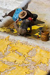 Men working with animal skins in the tanneries of Chouwara, Fes al Bali medina, Fes, Morocco
