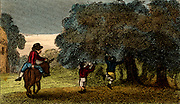 Harvesting cider apples, Herefordshire, England. Apples for cider are not carefully picked, they are knocked off the trees, or allowed to fall, and collected from the ground, then pressed and the juice fermented.   From 'Scenes in England' by the Rev. Isaac Taylor, London, 1822. Hand-coloured engraving.
