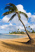 Po'ipu Beach Park, Po'ipu, Island of Kauai, Hawaii