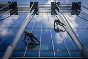 Using a system of ropes and cables, a team of window cleaners wipe plate-glass and lower themselves from a City of London office block.