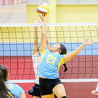 Dulce Hawk Jasmine Salazar (21) tips over the net to the Rehoboth Lynx at Rehoboth High School Saturday.