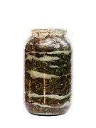 A jar of lettuce preserved in salt prepared for the winter by a peasant farmer, Botiza, Maramures, Romania