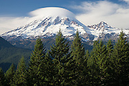 A Lenticular Cloud (Altocumulus standing lenticularis) forms on Mount Rainier signaling a change to moister weather, WA, USA The Muir Snowfield shows prominently on the mountain face and Little Tahoma is on the right. (viewed from the southeast)