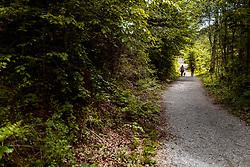 THEMENBILD - Wanderer mit einem Hund auf dem Weg zum Alten See, aufgenommen am 20. Mai 2017 in Tristach, Österreich // Hikers with a dog on the way to the Old Lake near the Tristachersee on 2017/05/20, Tristach, Austria. EXPA Pictures © 2017, PhotoCredit: EXPA/ JFK