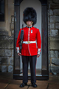 A bearskin is a tall fur cap, usually worn as part of a ceremonial military uniform. Traditionally, the bearskin was the headgear of grenadiers, and it is still worn by grenadier and guards regiments in various armies.