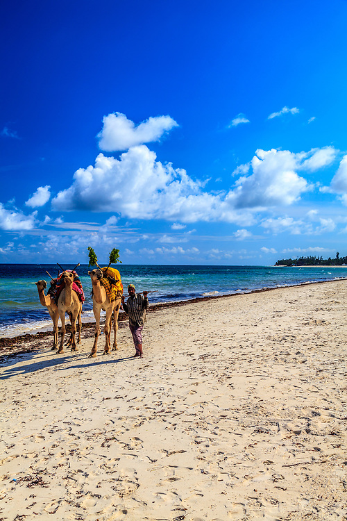 A camel man at Diani Reef Beach, Kenya.