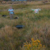 A woman flies a camera drone in the Owens Valley near Bishop, California.