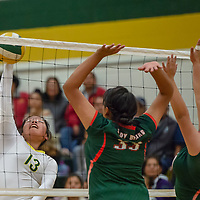 Hawks outside hitter Kayla Garcia (13), strikes with a surprise attack past Bears defenders Tomiandra Curley (33) and Shania Hosteen (20), in Thoreau Tuesday night.