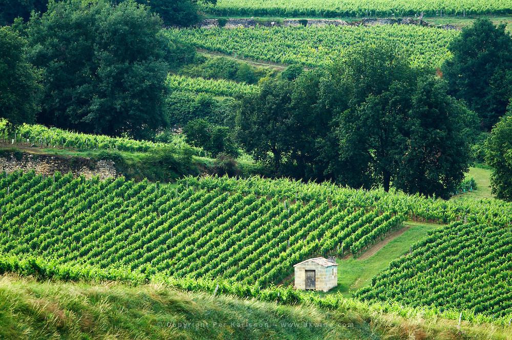 vineyard hut chateau gudeau saint emilion bordeaux france