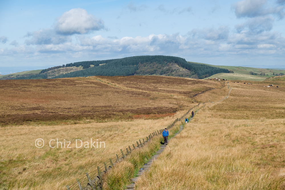 Piggford Moor