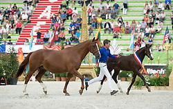 - Selle Francais Parade - Closing Ceremony - Alltech FEI World Equestrian Games™ 2014 - Normandy, France.<br /> © Hippo Foto Team - Jon Stroud<br /> 07/09/14