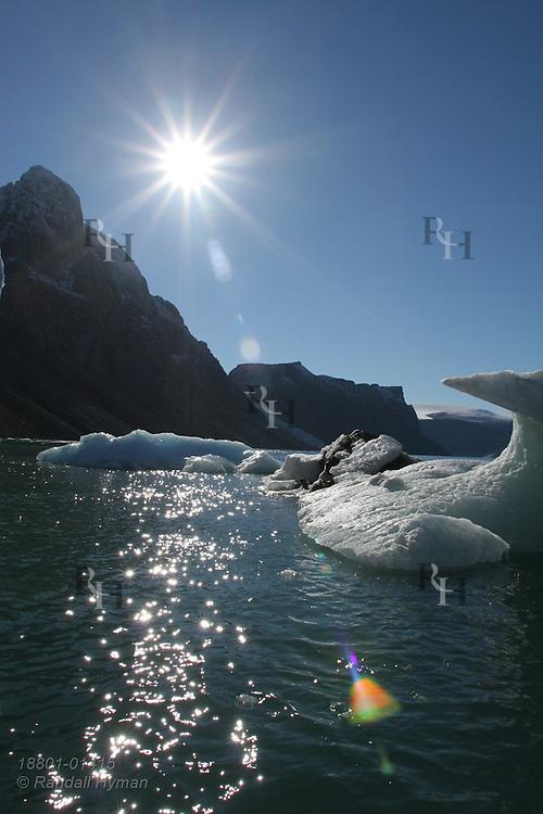 Calved glacial ice floats in sea in Dexterity Fjord, Baffin Island; Nunavut, Canada