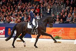 Scholtens Emmelie, NED, Desperado<br /> KWPN Stallionshow - 's Hertogenbosch 2018<br /> © Hippo Foto - Dirk Caremans<br /> 02/02/2018