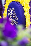 NOVEMBER 3, 2017: BREEDERS' CUP flower blankets.