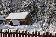 Bajkowa zima w Puszczy Białowieskiej - 31.01.2021