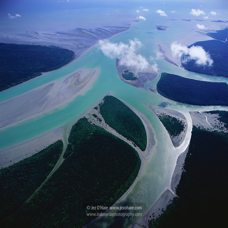 Ajkwa river estuary, Mimika, Papua, Indonesia.