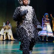 NLD/Amsterdam/20121104 - Premiere Shrek de musical, Rogier Komproe
