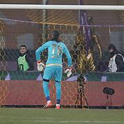 Osmanlispor's goalkeeper Ahmet Sahin (C) during their Turkish Super League soccer match Osmanlispor between Besiktas at the Osmanli Stadium in Ankara Turkey on Monday 21 December 2015. Photo by Kurtulus YILMAZ/TURKPIX