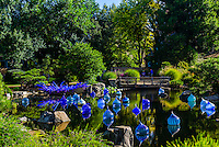 Blue and Purple Boat & Walla Wallas, Dale Chihuly Exhibition (blown glass), Japanese Garden, Denver Botanic Gardens, Denver, Colorado USA.