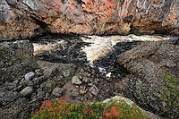 Kiutakongas rapids, Oulanka National Park, Finland.