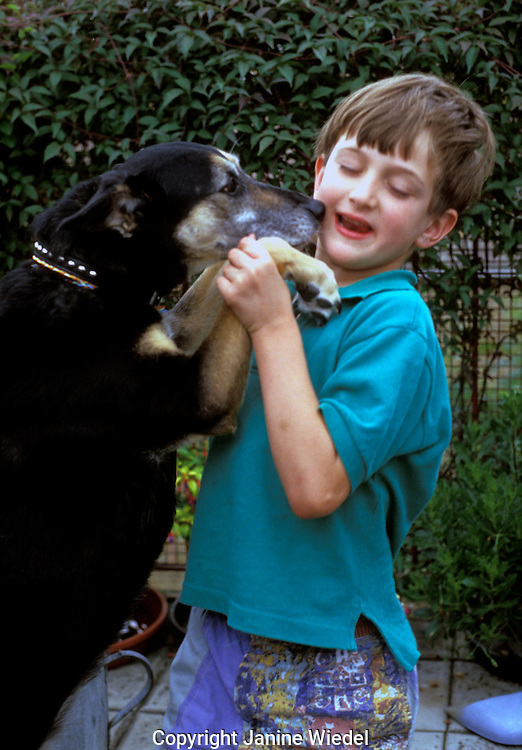 small boy with his pet dog jumping up to lick him on the face..