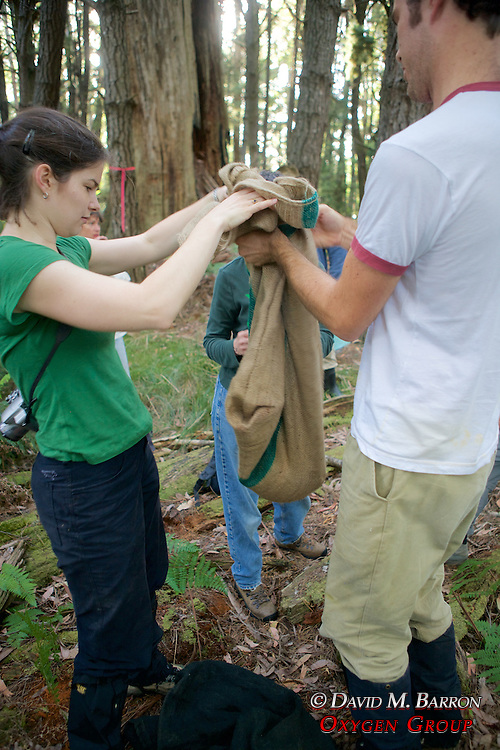 Sarah & Sam Transfering Possum From Trap